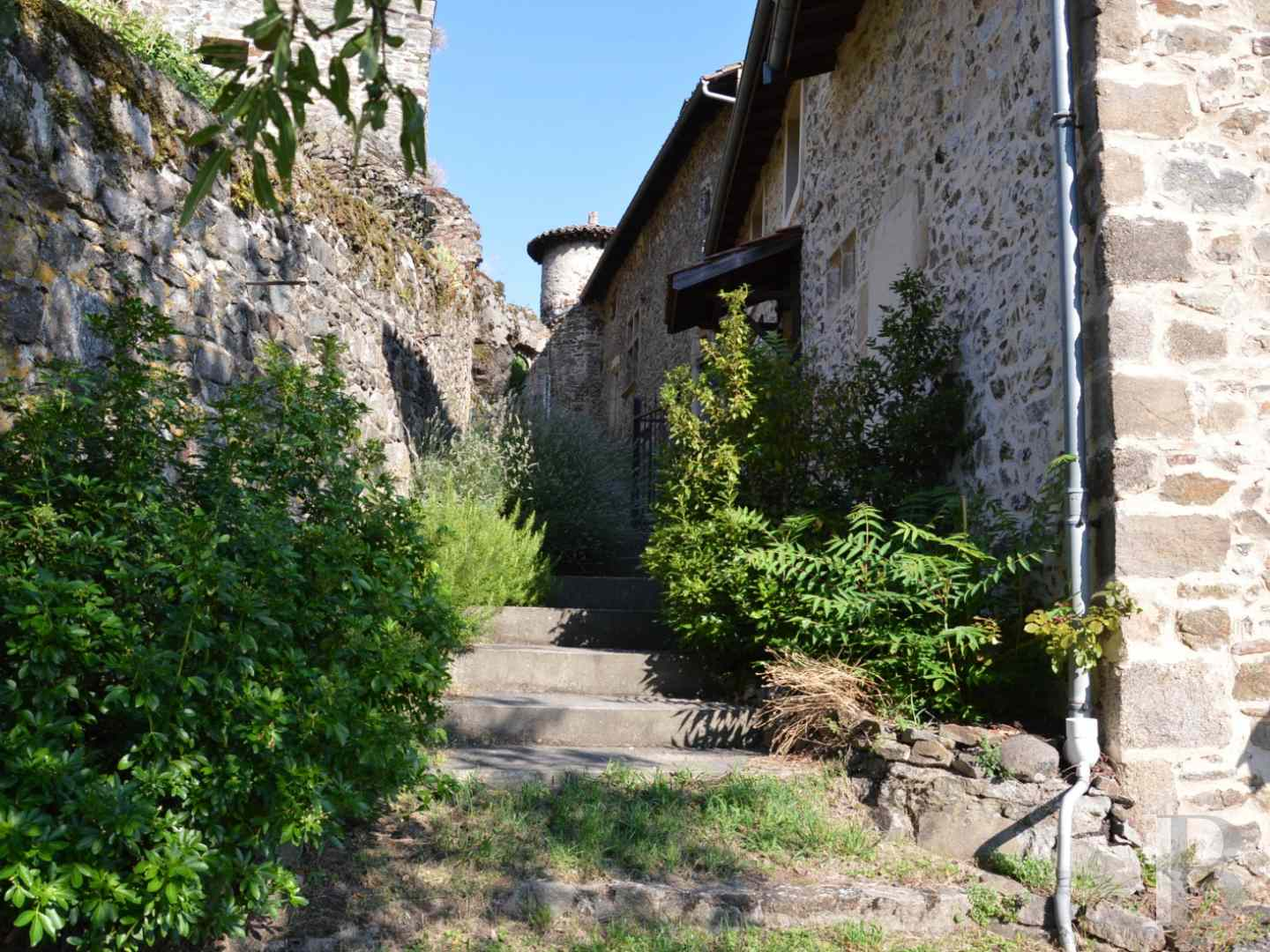 chateaux for sale France rhones alps castles chateaux - 5 zoom