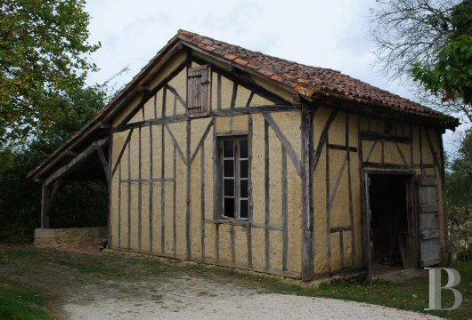 chateaux for sale France midi pyrenees   - 23