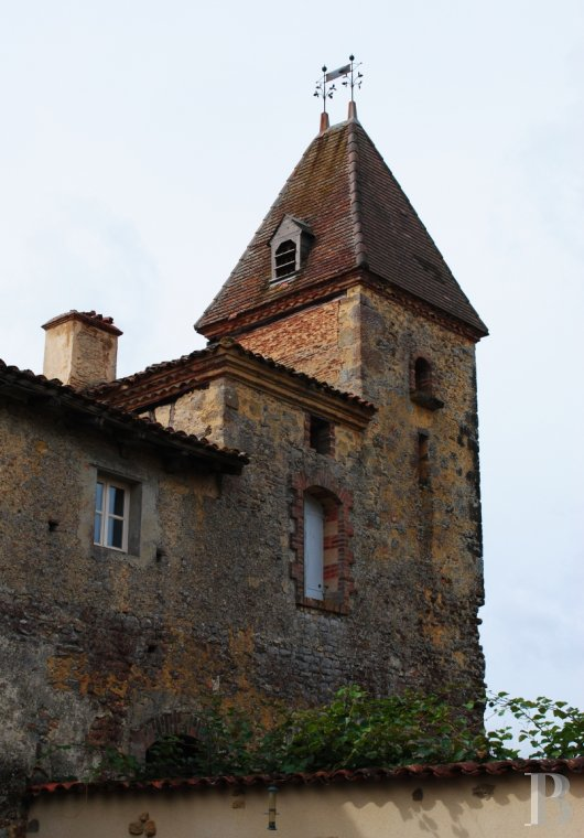 chateaux for sale France midi pyrenees castles chateaux - 6