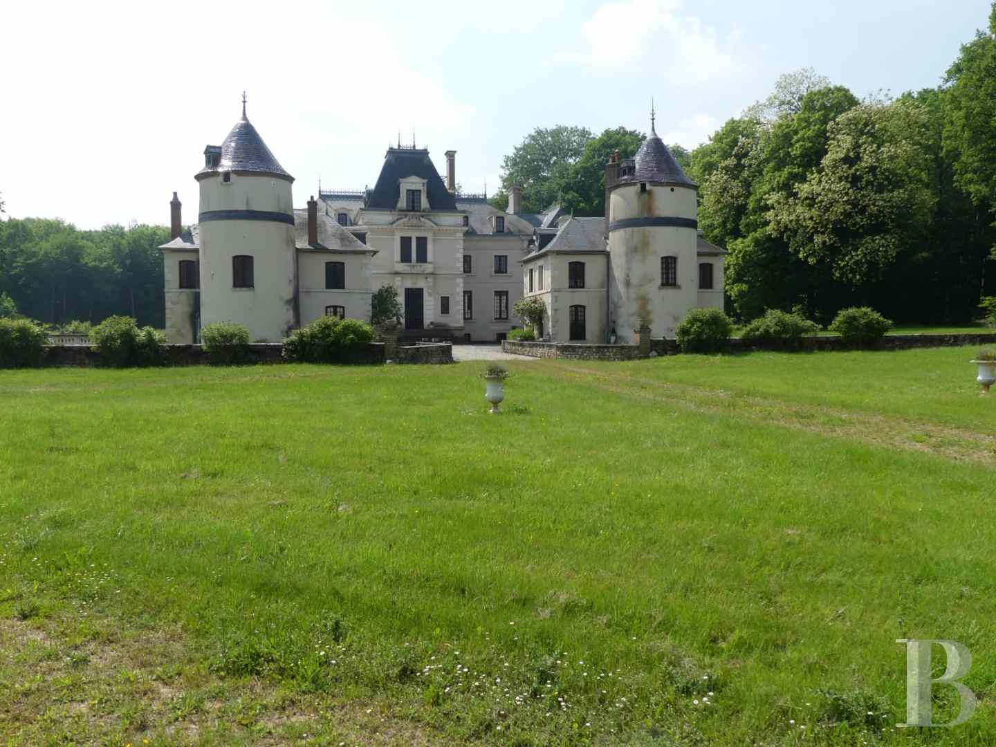 chateaux a vendre bourgogne chateau domaine - 2 zoom