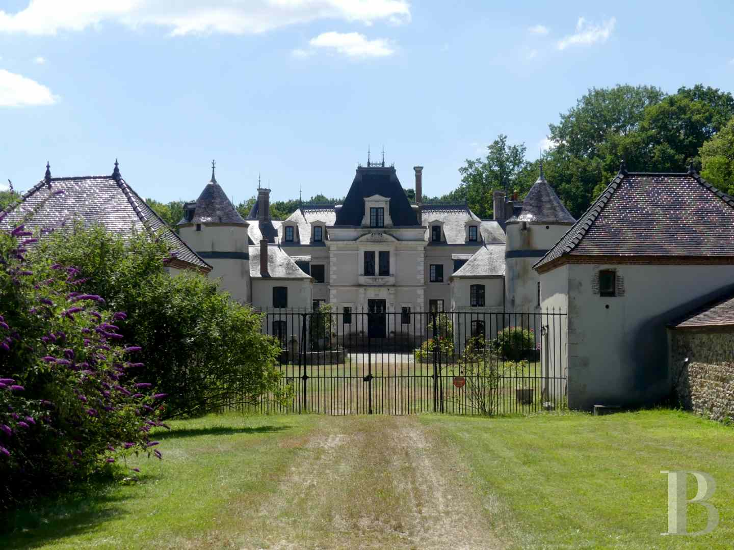 chateaux a vendre bourgogne chateau domaine - 1 zoom