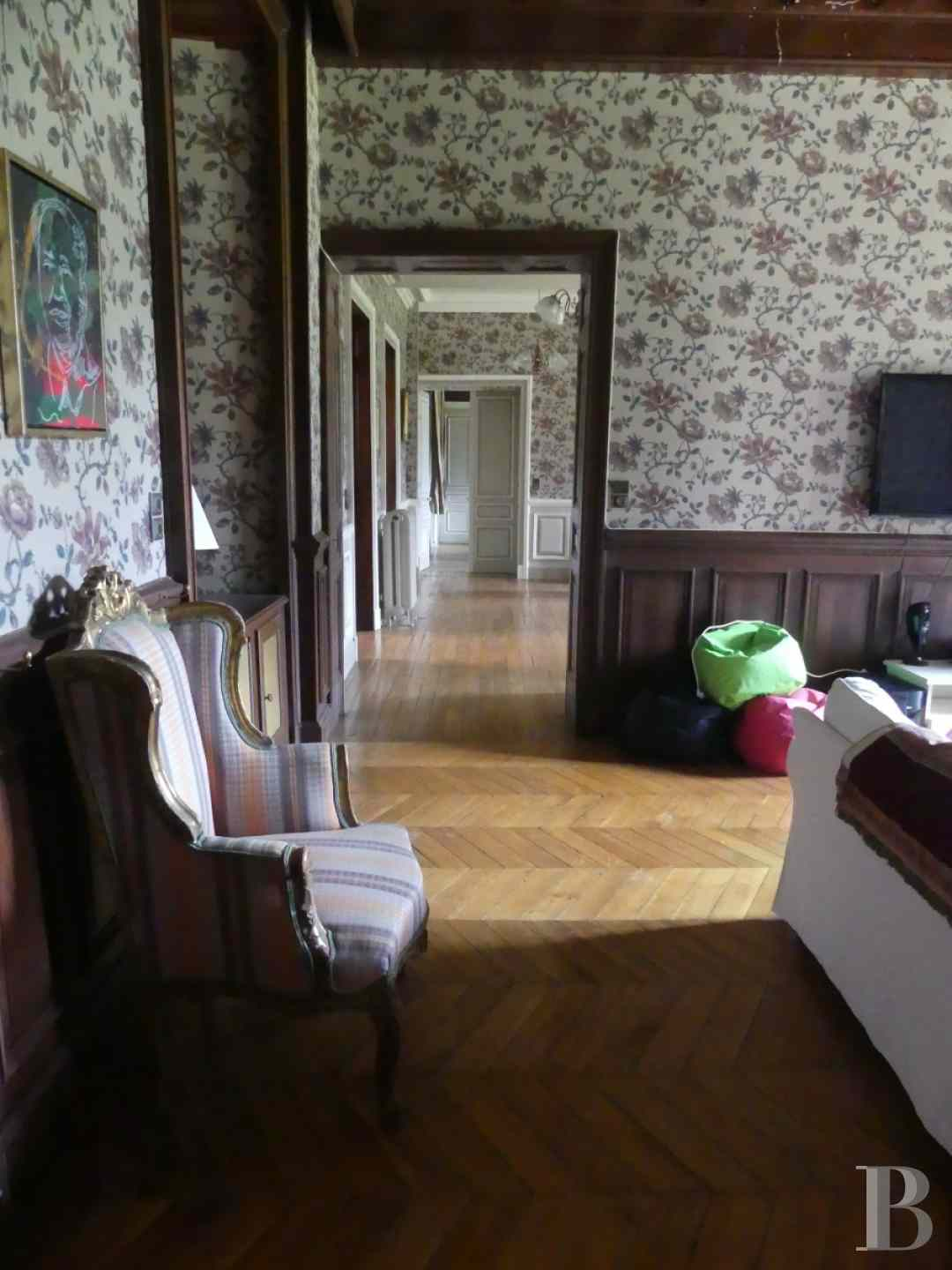 chateaux a vendre bourgogne chateau domaine - 9 zoom