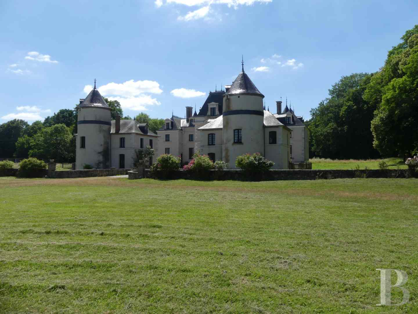 chateaux a vendre bourgogne chateau domaine - 4 zoom