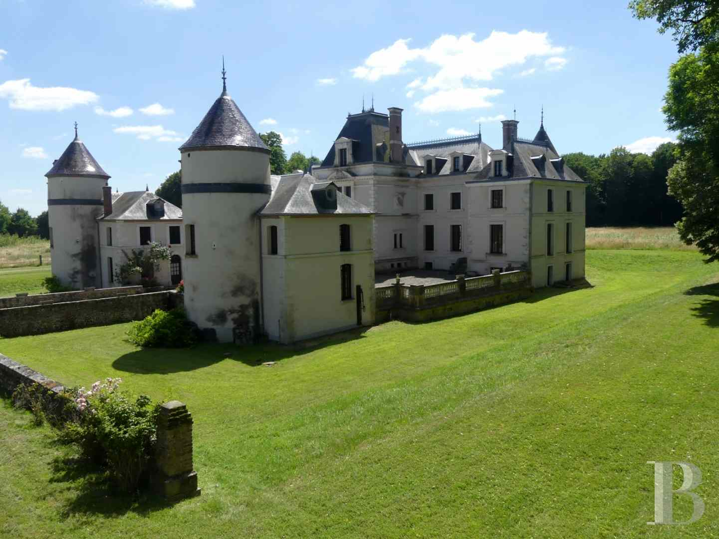 chateaux a vendre bourgogne chateau domaine - 5 zoom