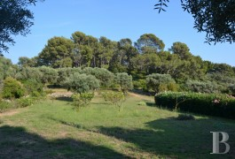 character properties France provence cote dazur   - 13