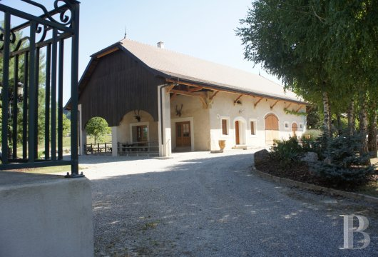 chateaux for sale France rhones alps   - 7