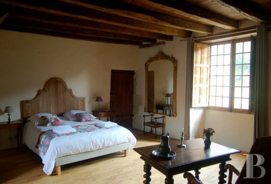 France mansions for sale aquitaine   - 9