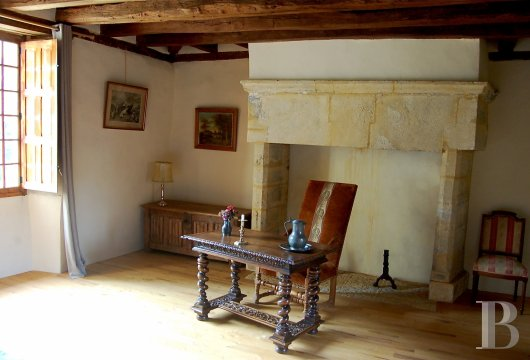 France mansions for sale aquitaine   - 10