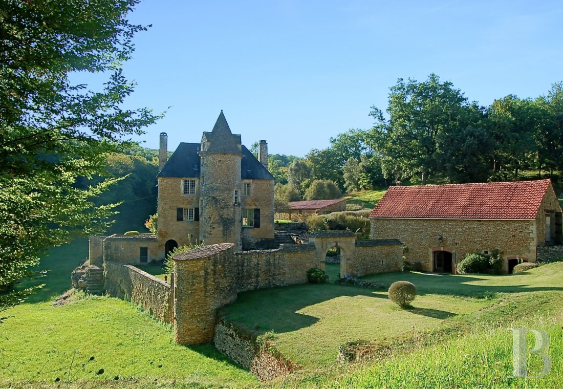 France mansions for sale aquitaine   - 1