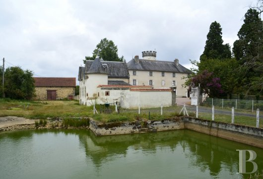 chateaux for sale France limousin castles chateaux - 3
