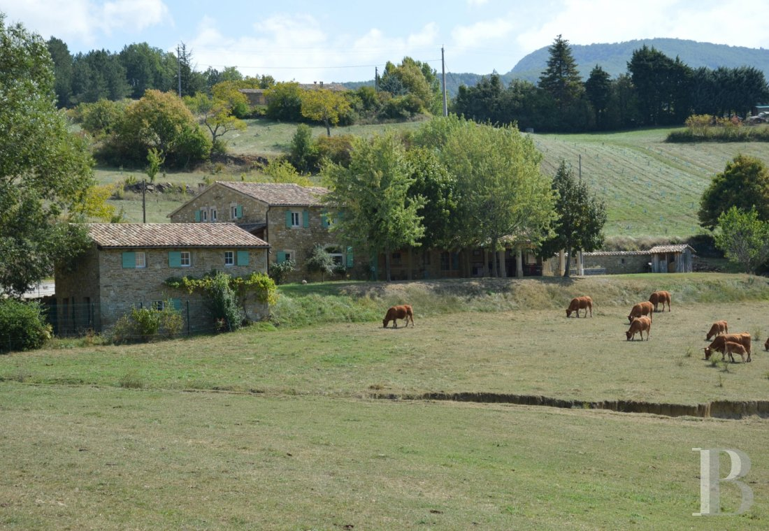 Character houses for sale - rhones-alps - A pleasant stone house, its large outbuilding and an exceptional view  in the Provencal Baronnies Regional Nature Park