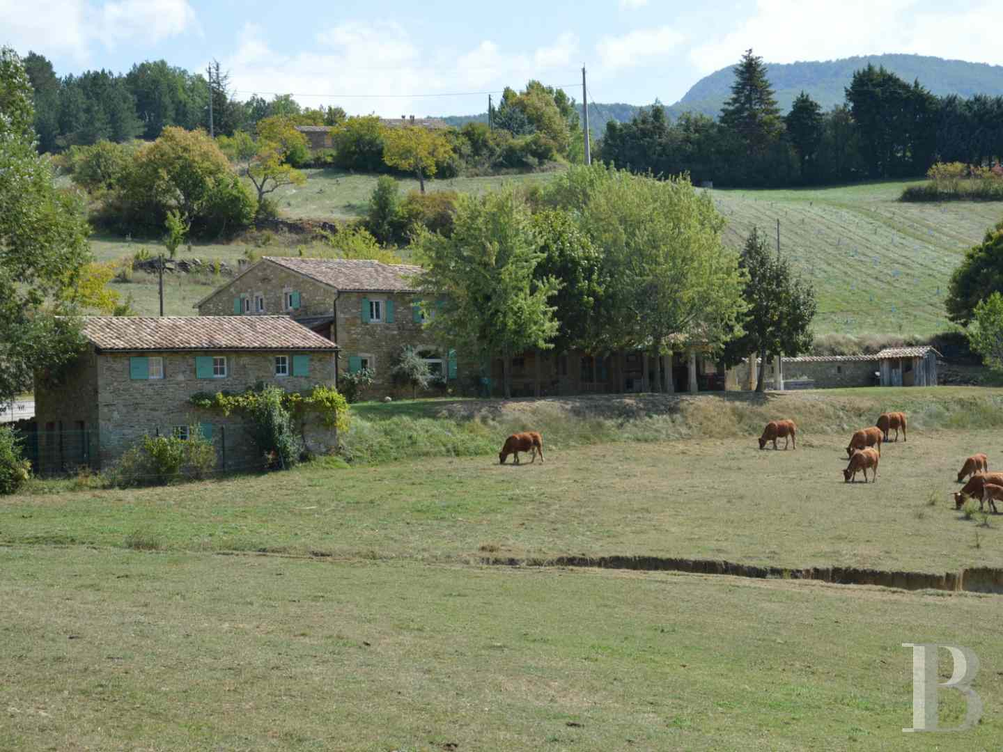 character properties France rhones alps character houses - 1 zoom