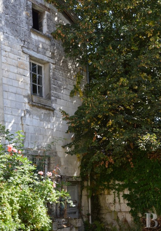Mansion houses for sale - champagne-ardennes - An 18th century mansion house awaiting restoration  less than 2 hours from Paris in the Champagne region