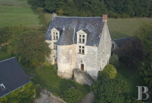 France mansions for sale pays de loire   - 6