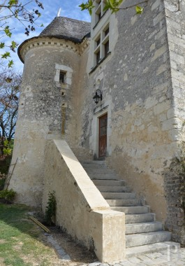 France mansions for sale pays de loire   - 4