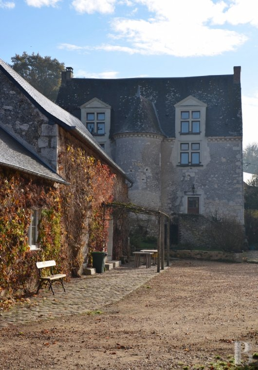 France mansions for sale pays de loire   - 12