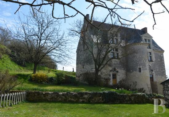 France mansions for sale pays de loire   - 1