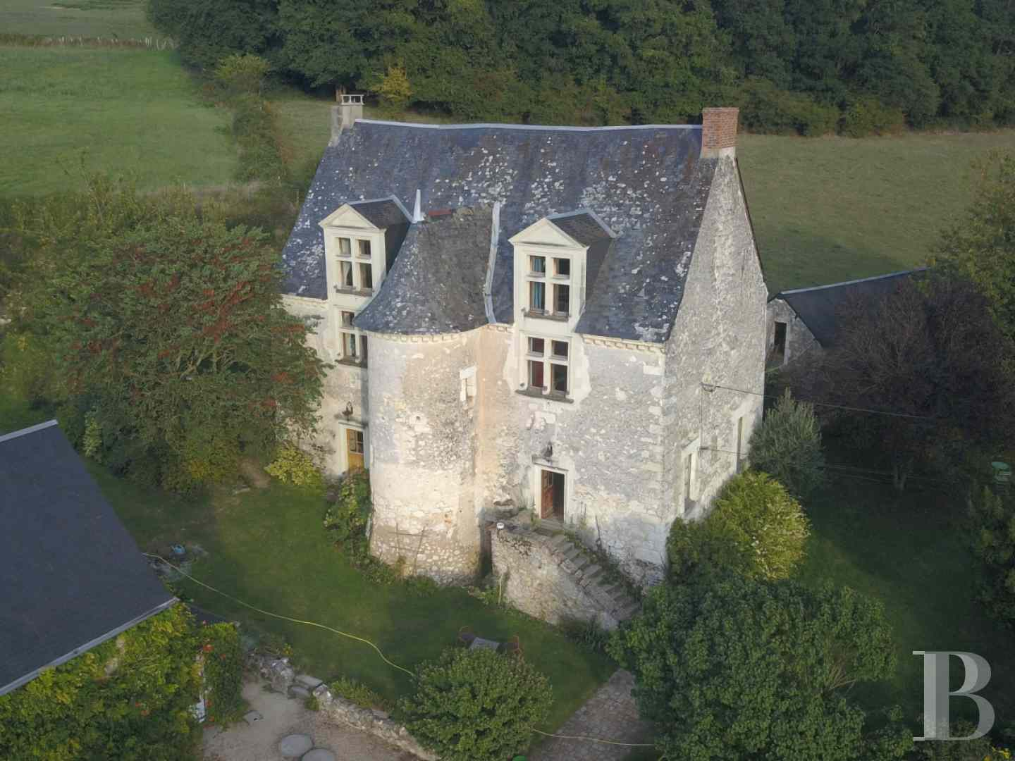 France mansions for sale pays de loire manors farms - 4 zoom