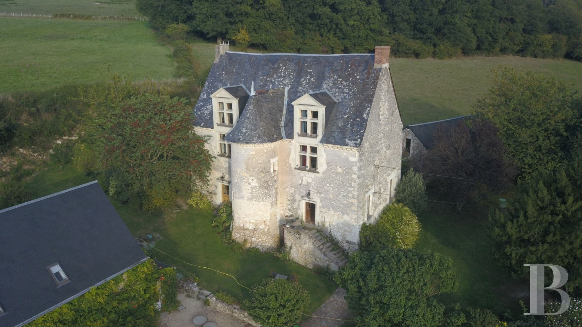 France mansions for sale pays de loire manors farms - 6 zoom
