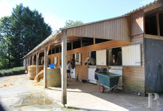 France mansions for sale lower normandy manors equestrian - 14 mini