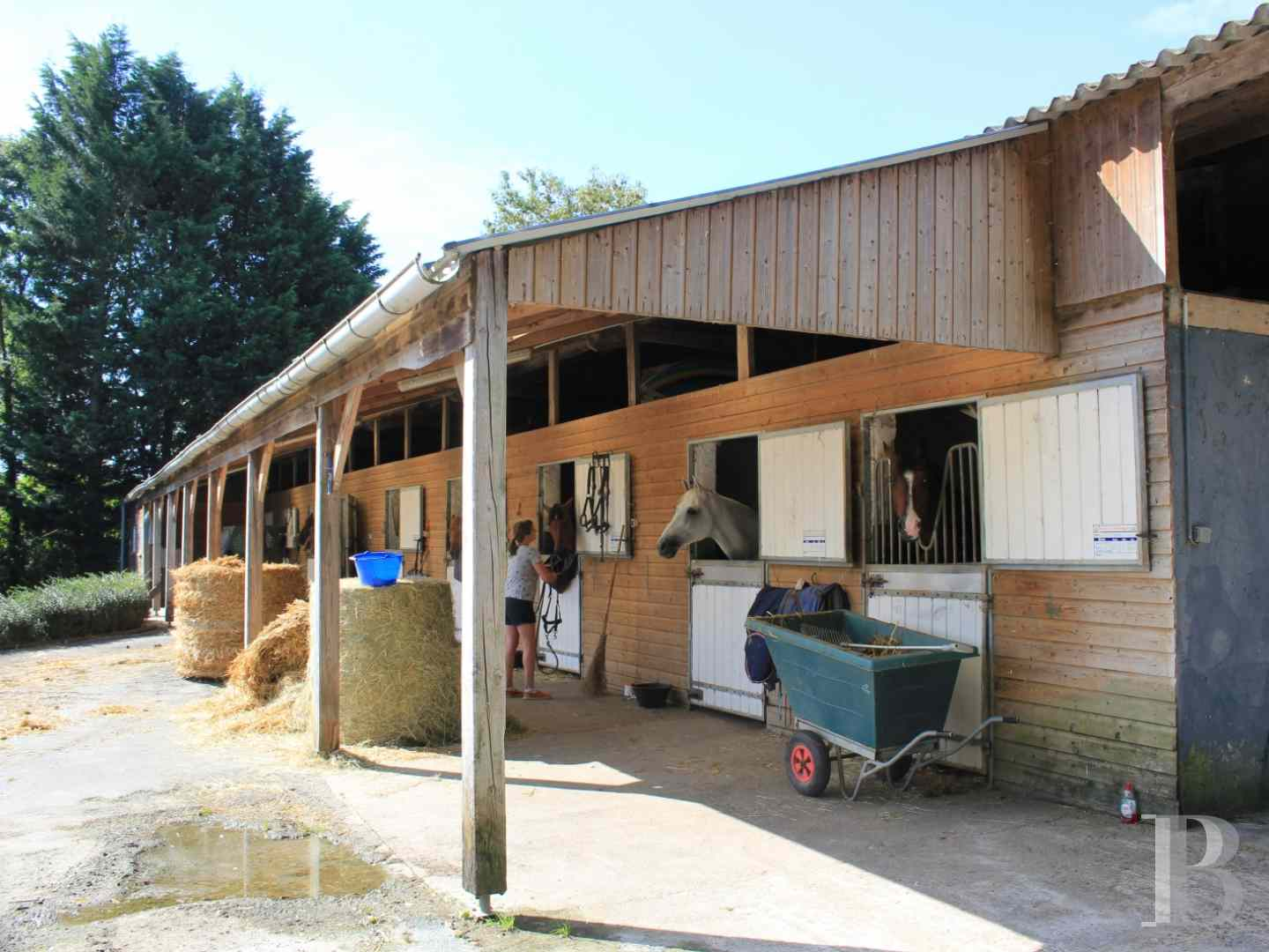manoirs a vendre basse normandie manoir propriete - 14 zoom