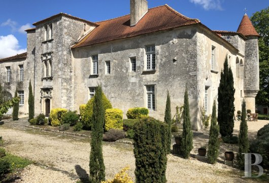 France mansions for sale poitou charentes   - 4