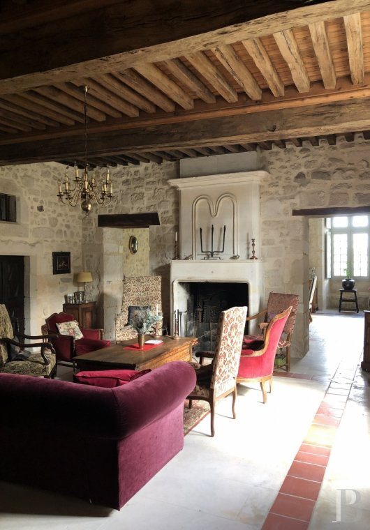 France mansions for sale poitou charentes   - 5