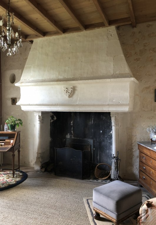 France mansions for sale poitou charentes   - 12