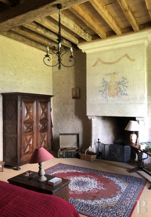 France mansions for sale poitou charentes   - 9
