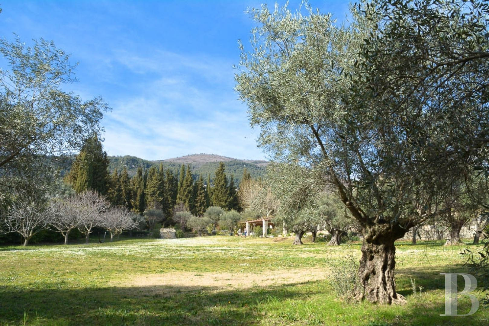 property for sale France provence cote dazur residences traditional - 12 zoom
