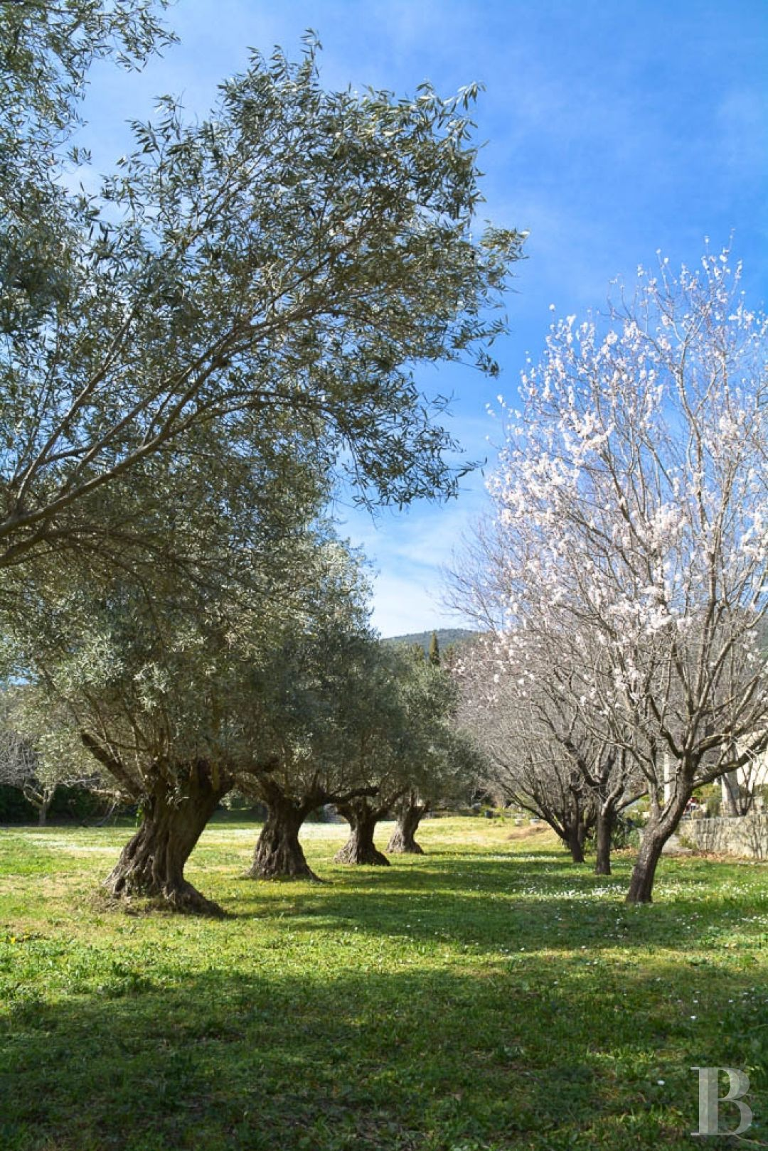property for sale France provence cote dazur residences traditional - 10 zoom