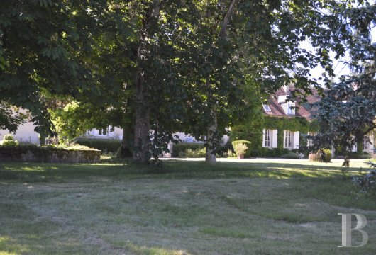 chateaux for sale France center val de loire   - 9