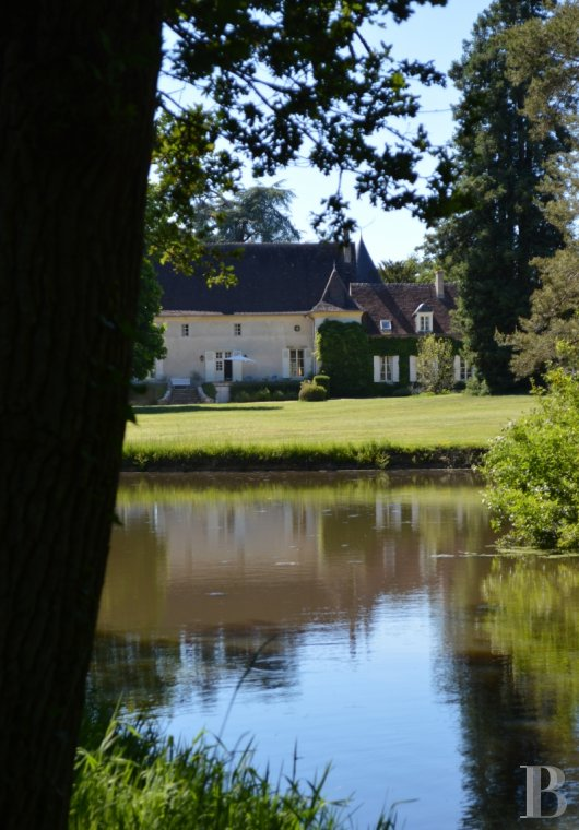 chateaux for sale France center val de loire   - 3