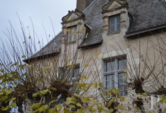 France mansions for sale center val de loire   - 4