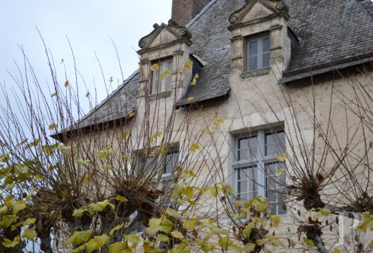 France mansions for sale center val de loire manors hunting - 4 mini