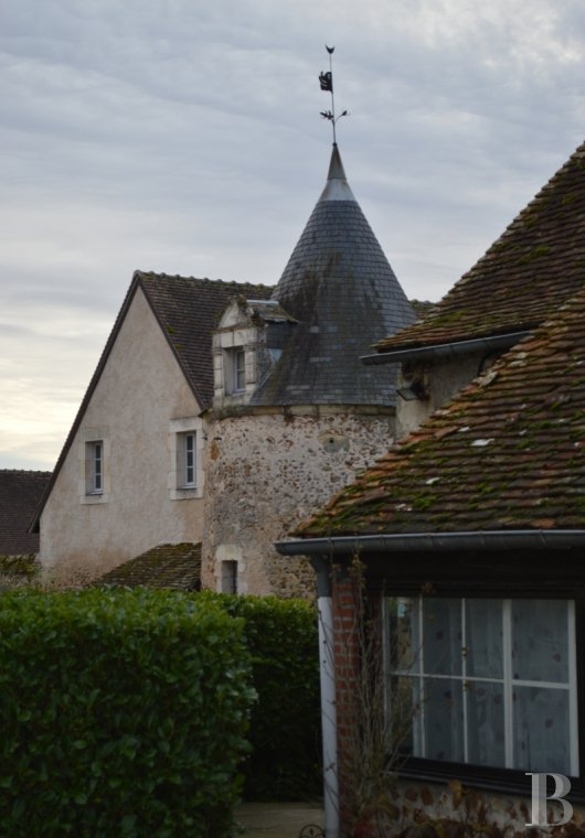 France mansions for sale center val de loire manors hunting - 3 mini