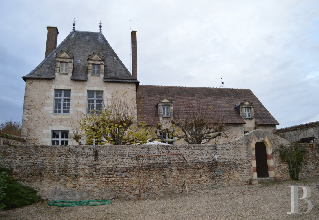 France mansions for sale center val de loire   - 1