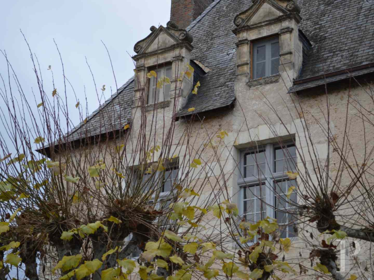 France mansions for sale center val de loire manors hunting - 4 zoom