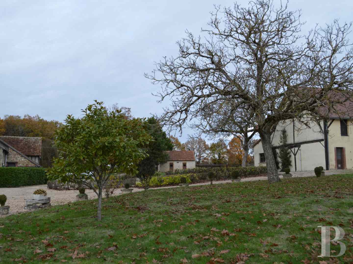 France mansions for sale center val de loire manors hunting - 11 zoom