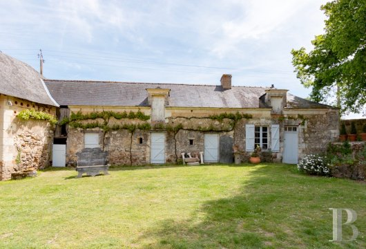 chateaux for sale France pays de loire   - 15