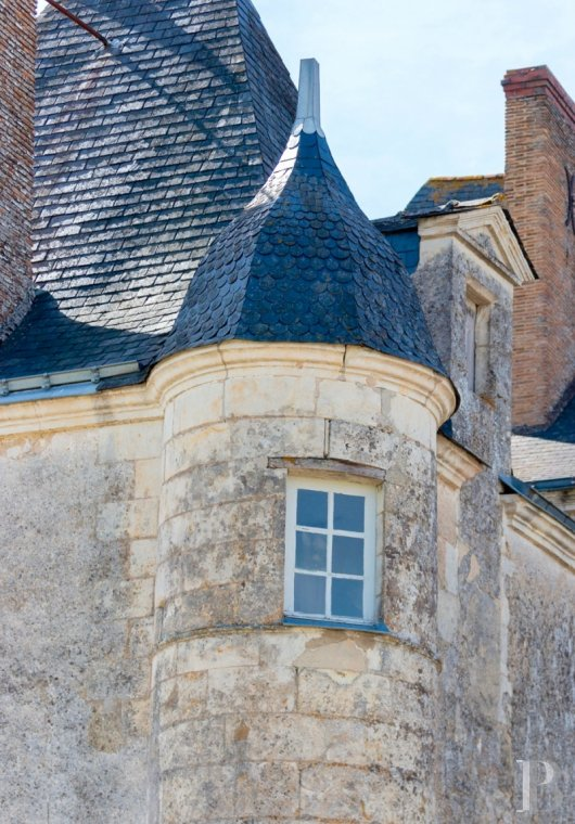 chateaux for sale France pays de loire   - 5