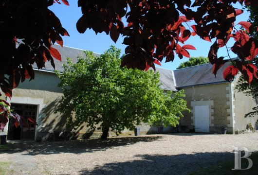 France mansions for sale center val de loire   - 13