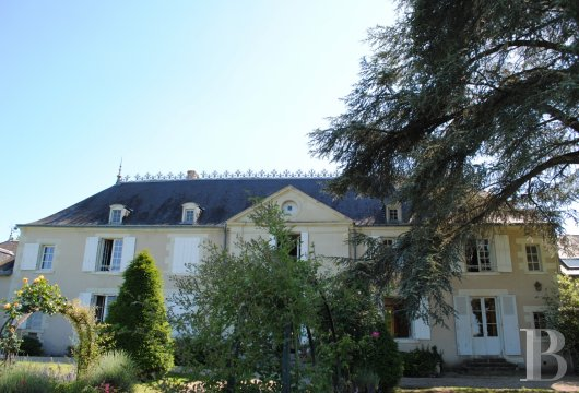 France mansions for sale center val de loire   - 2