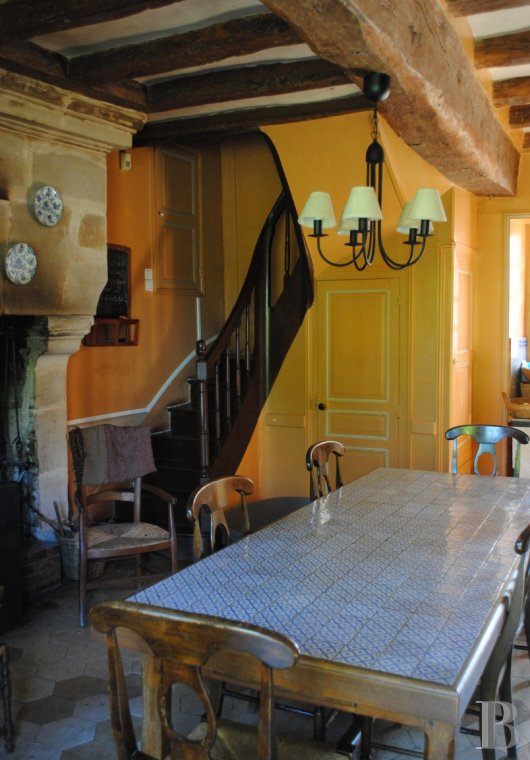 France mansions for sale center val de loire   - 8