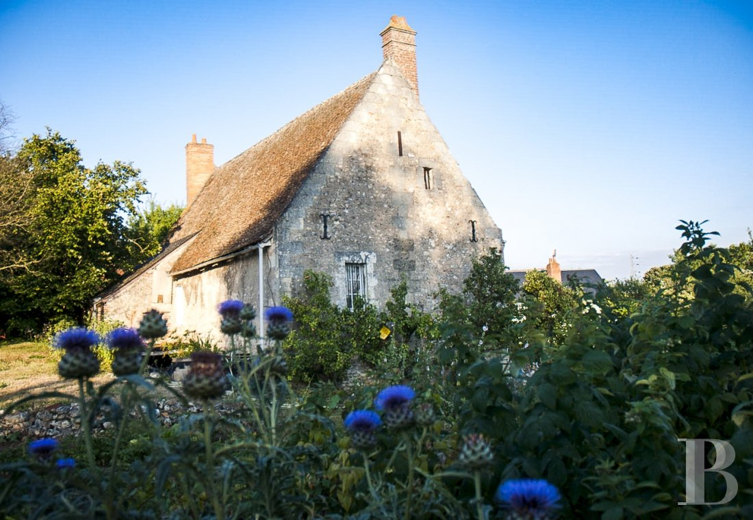 Character houses for sale - center-val-de-loire - An old, 17th century tenant farm, with a view over a lake  and almost 2 ha, 10 minutes from the centre of Tours