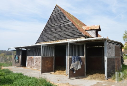 property for sale France pays de loire manors equestrian - 17