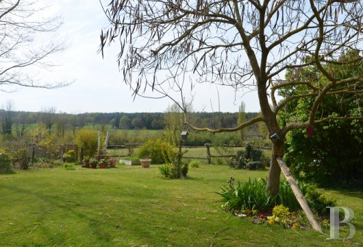 property for sale France pays de loire manors equestrian - 11