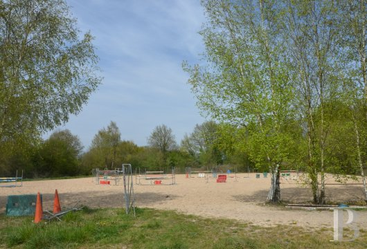 property for sale France pays de loire manors equestrian - 15