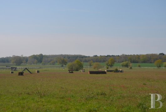 french farms for sale pays de loire   - 15