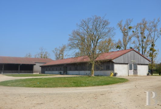 french farms for sale pays de loire   - 5